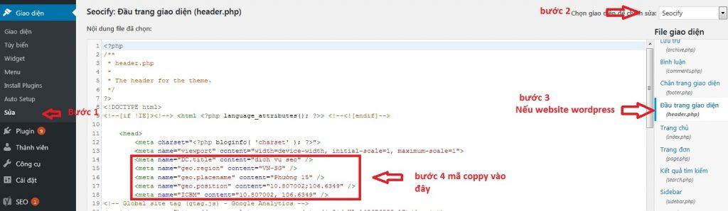 cài geo meta tag website